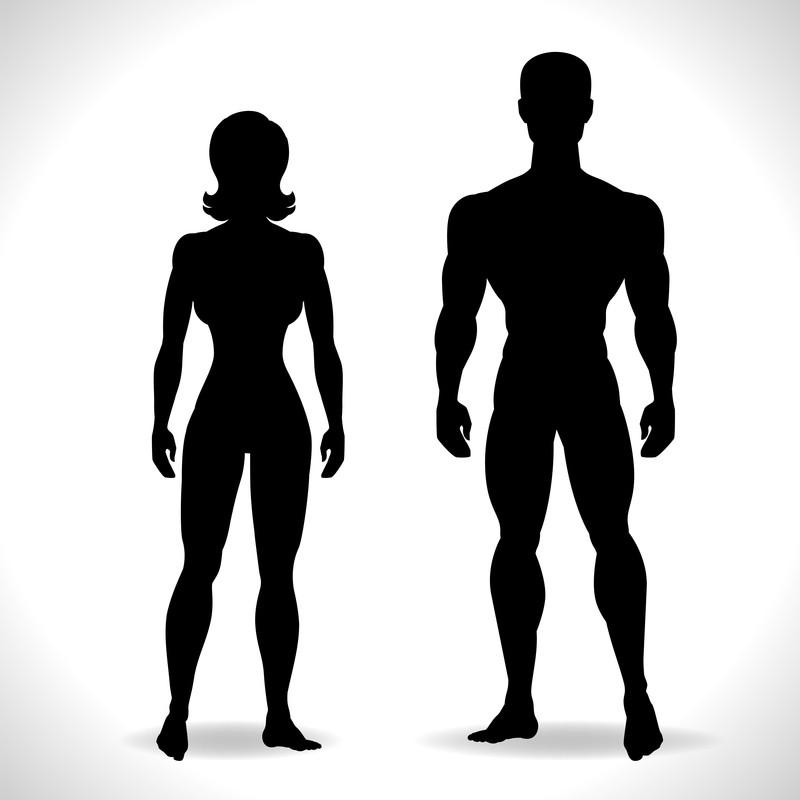 female and male elite athletes